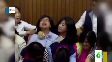 Los surrealistas vídeos del Parlamento de Taiwán