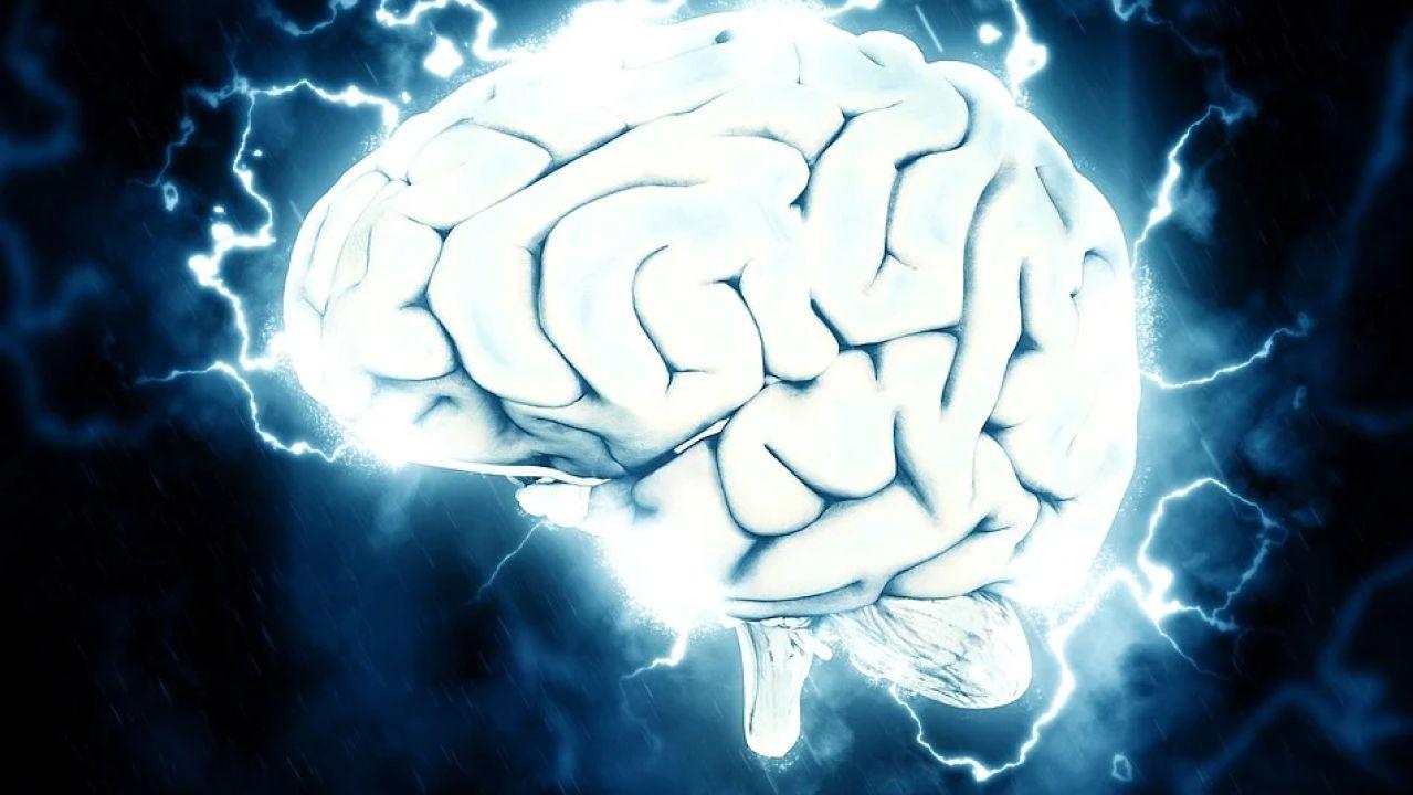 En el Día Mundial del Cerebro, conoce la enfermedad de Parkinson