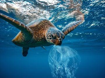 El oceano Atlantico tiene mas microplasticos que los que se creia