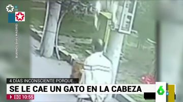 El vídeo más loco de Internet: un gato deja inconsciente a un hombre tras impactar contra él y su perro con calcetines le 'riñe'