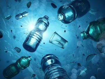 Basura y plásticos en los océanos. Biodiversidad