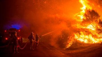 Varios bomberos realizan labores de extinción en un incendio forestal