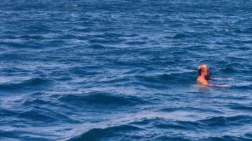 Se adentra en el mar tras caminar desnudo por Alboraia
