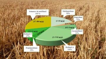 Detectadas trazas de contaminantes procedentes de plasticos detergentes y medicamentos en los cereales