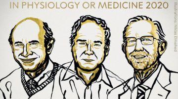 Harvey J. Alter, Michael Houghton y Charles M. Rice, ganadores del premio Nobel de Medicina 2020