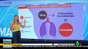 ¿El resfriado común combate el coronavirus? Un estudio afirma que sí
