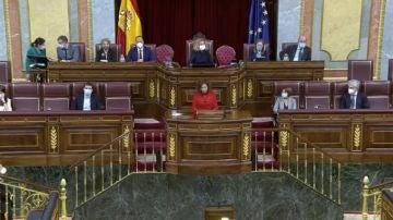 María Jesús Montero en el Congreso
