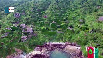 Un cementerio de vehículos o una ciudad inmersa en vegetación: los lugares abandonados que la naturaleza ha hecho suyos