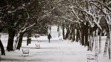 Una persona camina sobre la nieve en un parque en Vitoria