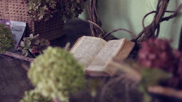 Viajes literarios