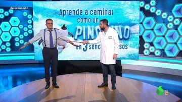 """Cómo un pingüino en tres sencillos pasos: curso para evitar caídas """"ridículas"""" en el hielo"""