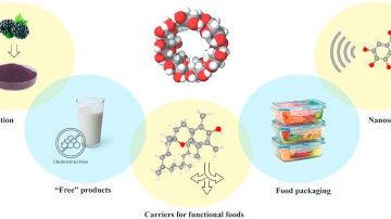 Un anillo de glucosa con multiples aplicaciones en la industria alimentaria