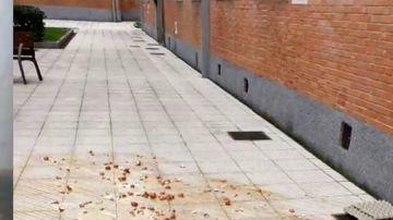 Atacan con huevos la casa del presidente de Asturias, Adrián Barbón