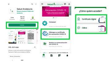 Así puedes conseguir el certificado de vacunación de Andalucía