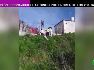 Una mujer induce a cuatro menores a robar varios chihuahuas en Móstoles mientras lo graba y se ríe