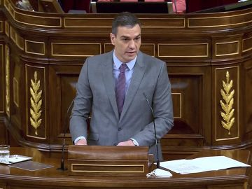 Pedro Sánchez en el Congreso de los Diputados