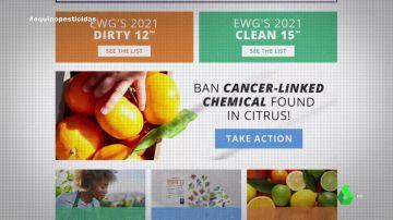 Informe sobre pesticidas en alimentos