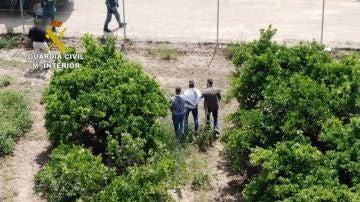 La Guardia Civil detiene a un narcotraficante que llevaba desde julio huido