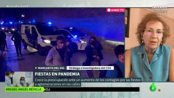"""La advertencia de Margarita del Val sobre las fiestas de fin de estado de alarma: """"Si hay alguien contagiado lo puede propagar fácilmente"""""""