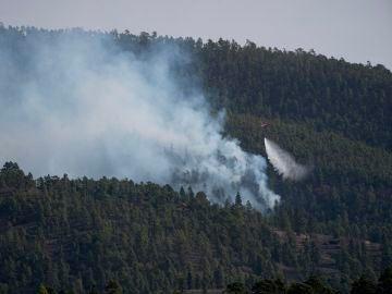 El incendio forestal declarado el jueves en el municipio tinerfeño de Arico ha avanzado durante la noche hasta afectar 2.800 hectáreas