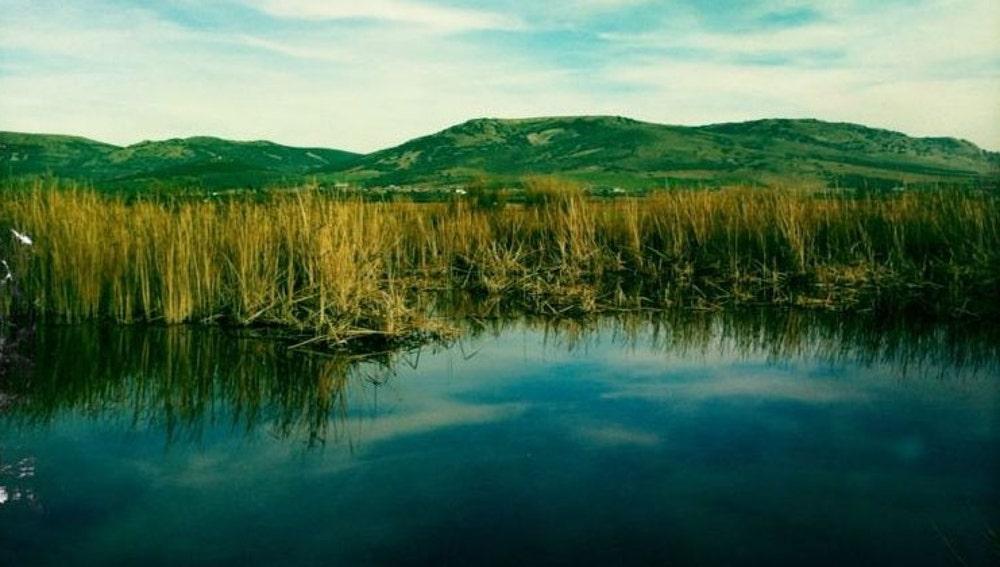 Laguna de Caracuel