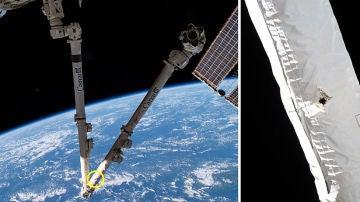 Un brazo robótico de la Estación Espacial Internacional ha sido dañado por la basura espacial