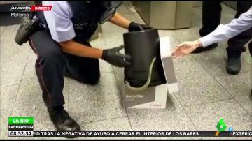 El momento en el que una serpiente irrumpe en una estación del Metro de Barcelona