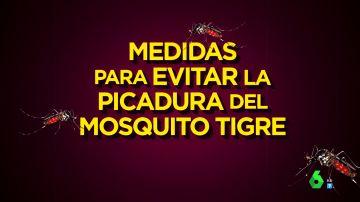 soluciones mosquitos