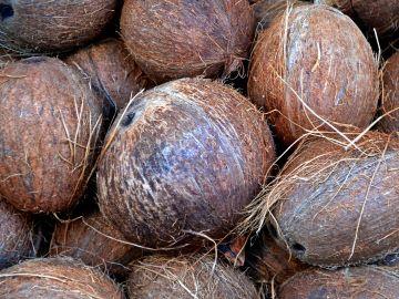 Cómo saber si un coco está bueno