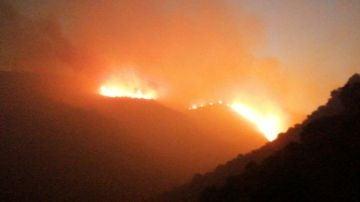 Incendio forestal en Llançà