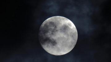 Calendario lunar: ¿Cuándo habrá Luna llena en agosto?