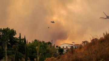Más de mil personas desalojadas por el incendio de Sierra Bermeja, Málaga