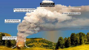 El pirocúmulo, la temida nube que complica la extinción del incendio de Málaga