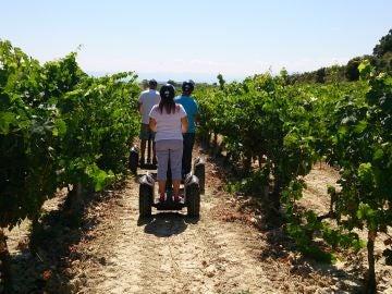 Paseando cómodamente entre viñedos