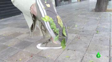 Una plaga de cochinillas deja una película pegajosa en las calles de Valencia y provoca la contaminación de 1.200 árboles
