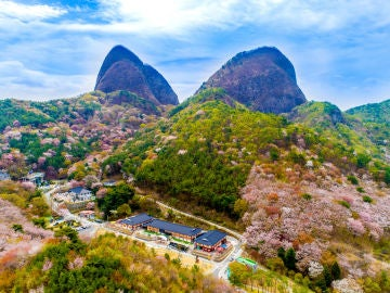 Estas son algunas de las razones por las que querrás visitar Corea del Sur
