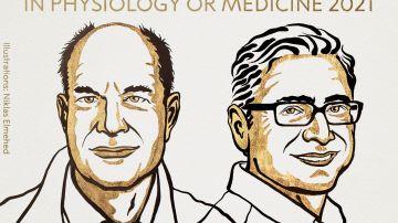David Julius y Ardem Patapoutian, Premio Nobel de Medicina 2021