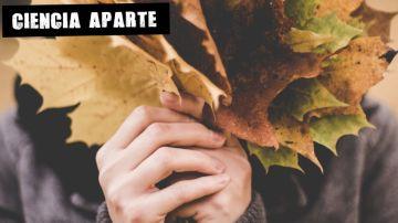 El microbioma de la piel se altera en otoño y esto es lo que la cosmética puede hacer por él