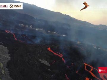 Un nuevo río de lava avanza hacia el mar casi un mes después del inicio de la erupción
