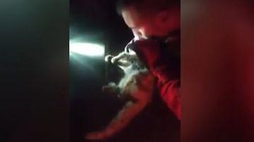 Un militar reanima a un gato