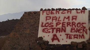 """""""Los perros están bien"""": el vídeo (con cartel incluido) del 'Equipo A' sobre el misterioso rescate en La Palma"""