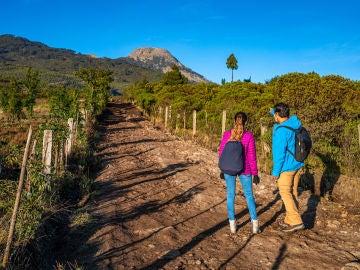 ¿Sabes cuáles son los puntos más altos que puedes escalar en Centroamérica?