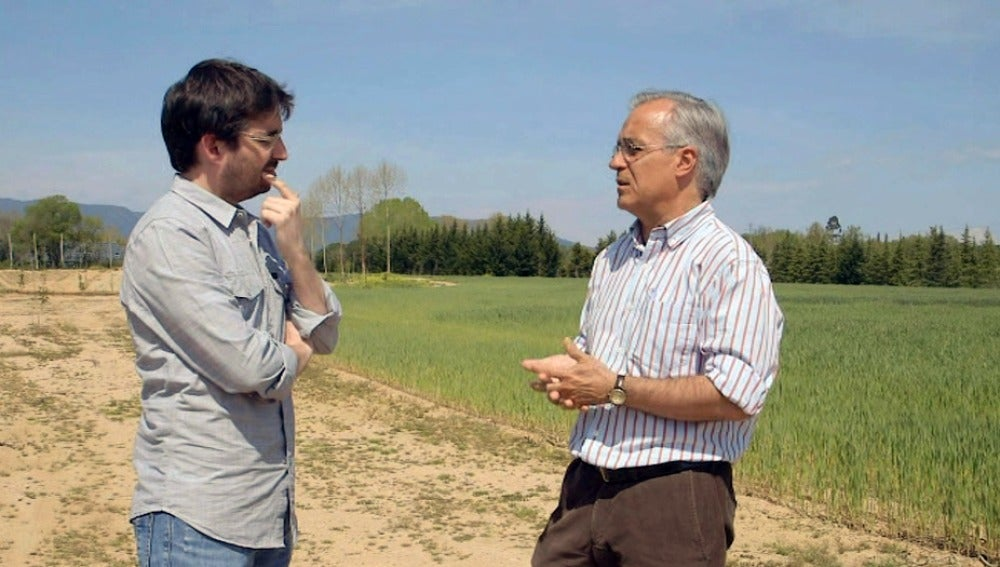 Miquel Porta, catedrático de Salud Pública de la UAB
