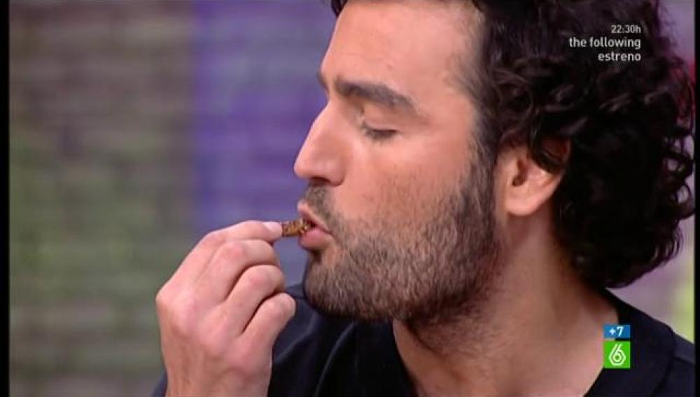 Raúl come insectos