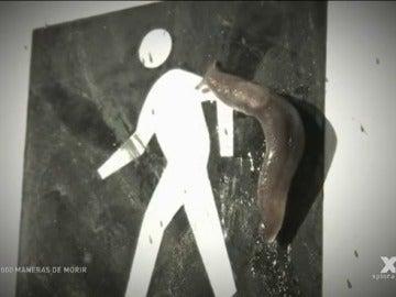 1000 MANERAS DE MORIR, Videos, Capítulos de LA SEXTA TV | LA