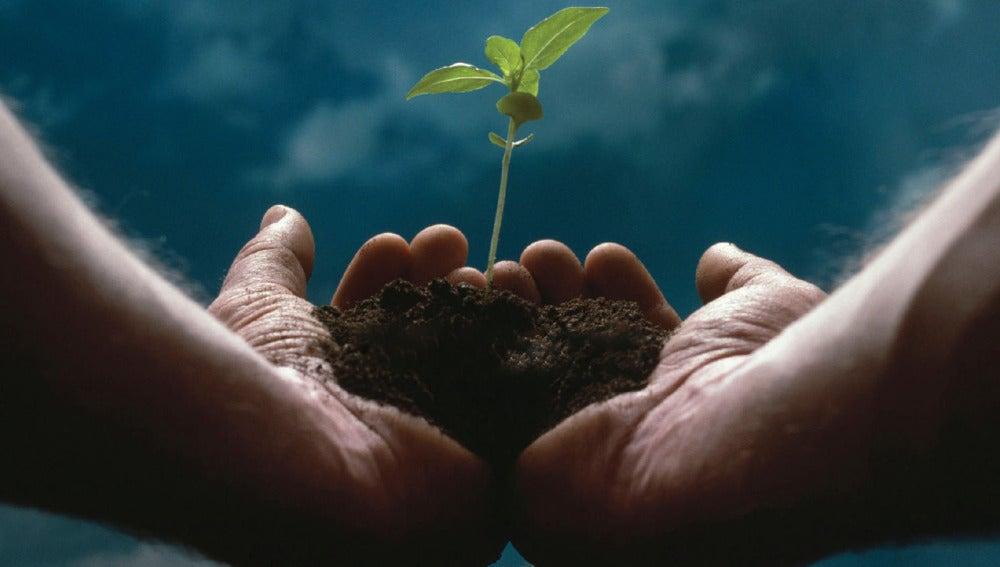 El emprendimiento revierte grandes beneficios a la sociedad