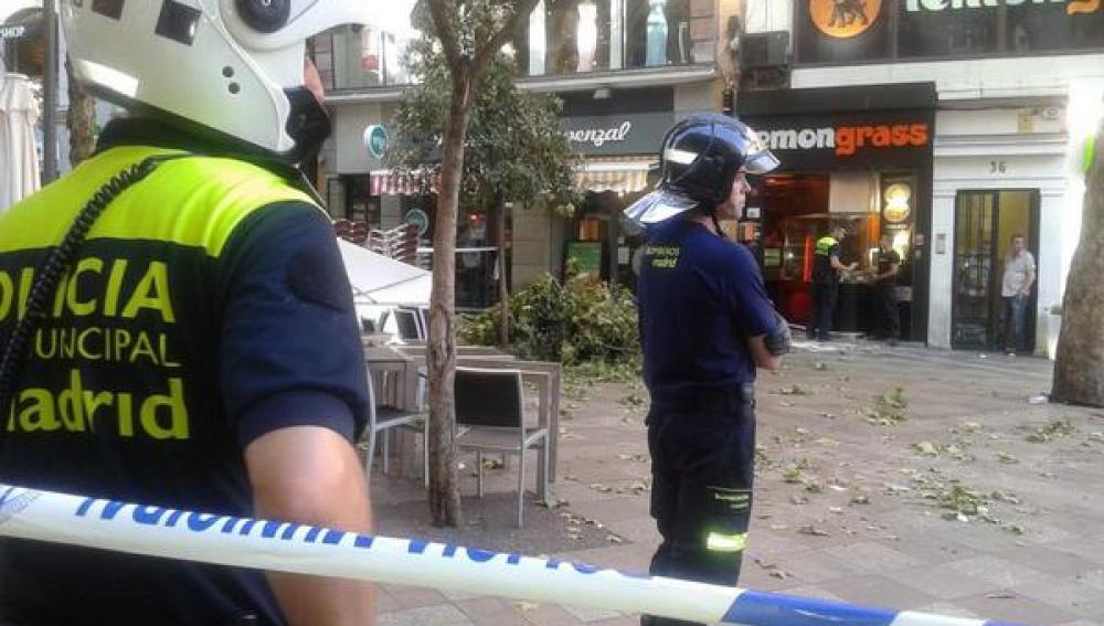 Cinco heridos leves en la caída de otra rama de árbol sobre una terraza en Madrid