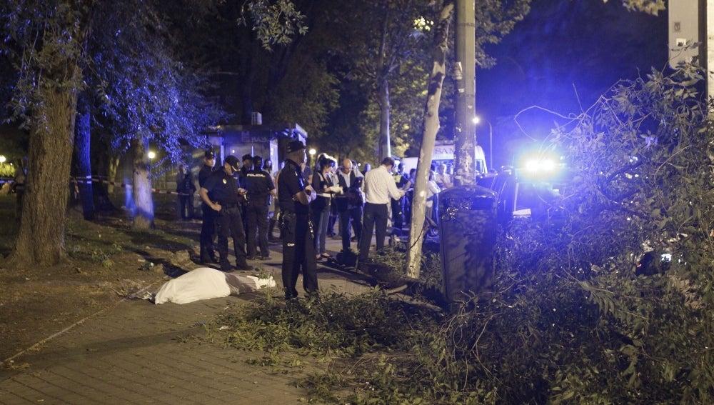 Fallece un hombre al ser golpeado por la rama de un árbol