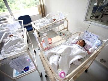 Imagen de archivo de bebés recién nacidos en sus cunas en un hospital