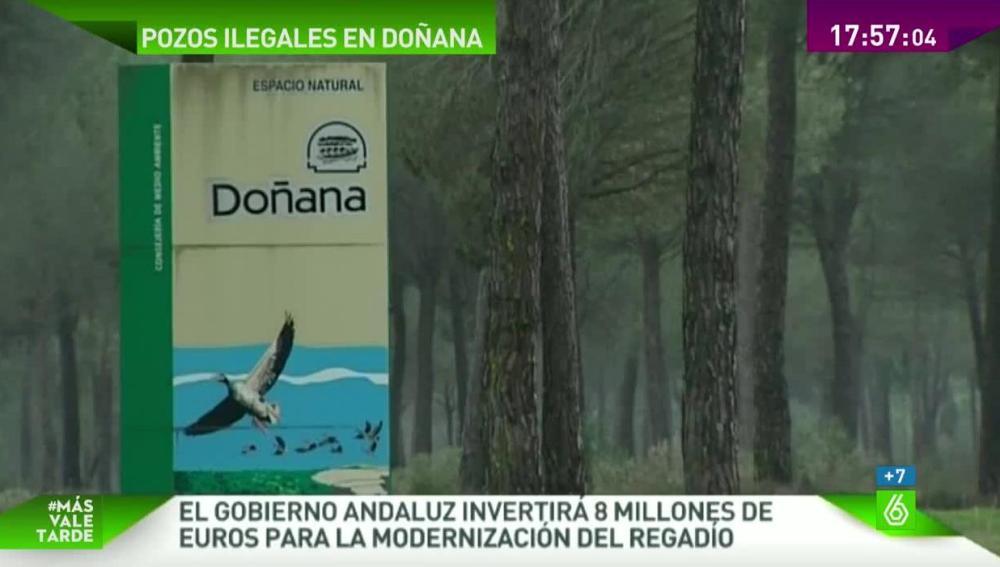Parque Natural de Doñana.